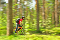 Сyclist, racing through the woods Stock Photo