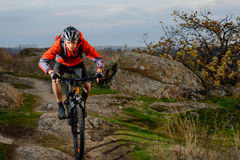 Cyclist in Red Jacket Riding the Bike on the Rocky Trail. Extreme Sport. Space for Text. Stock Image
