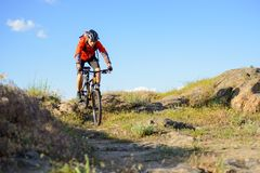 Cyclist in Red Jacket Riding Mountain Bike on the Beautiful Spring Rocky Trail. Extreme Sport Concept Stock Image
