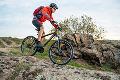 Cyclist in Red Riding the Mountain Bike down Autumn Rocky Trail. Extreme Sport and Enduro Biking Concept. Royalty Free Stock Photography