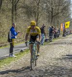 The Cyclist Rick Flens in The Forest of Arenberg- Paris Roubaix. Trouee d`Arenberg,France - April 12,2015: The Dutch cyclist, Rick Flens of LottoNL-Jumbo Team Stock Photo