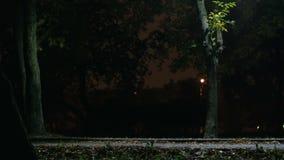 Cyclist rides through the park. Cyclist rides through the night park stock video