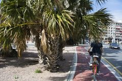 Cyclist rides through the streets of Valencia, Spain. royalty free stock photo
