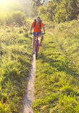 Cyclist on the Riding Bicycle Walk Stock Photography