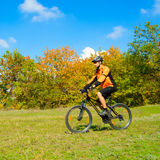 Cyclist Riding the Bike in the Beautiful Autumn Forest Royalty Free Stock Image