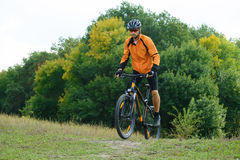 Cyclist Riding the Bike in the Beautiful Autumn Forest Royalty Free Stock Photography