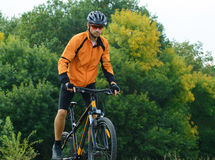 Cyclist Riding the Bike in the Beautiful Autumn Forest Stock Photography