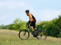 Cyclist Riding the Bike in the Beautiful Autumn Forest Stock Images