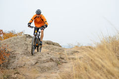 Cyclist Riding Bike on the Beautiful Autumn Mountain Trail Royalty Free Stock Image