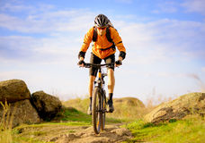 Cyclist Riding the Bike on Morning Mountain Trail Royalty Free Stock Photo