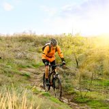 Cyclist Riding the Bike on Morning Mountain Trail Royalty Free Stock Photos