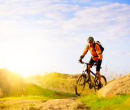 Cyclist Riding the Bike on Morning Mountain Trail Stock Image