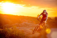 Cyclist Riding the Bike on the Mountain Trail at Sunset Royalty Free Stock Images