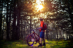 Cyclist Riding the Bike on the Trail in Beautiful Fairy Pine Forest. Adventure and Travel Concept. Royalty Free Stock Photo