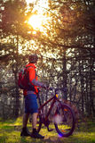 Cyclist Riding the Bike on the Trail in Beautiful Fairy Pine Forest. Adventure and Travel Concept. Royalty Free Stock Images