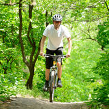 Cyclist Riding the Bike on the Trail in the Forest Royalty Free Stock Photo
