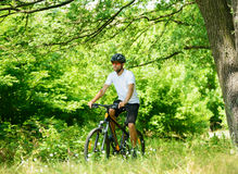 Cyclist Riding the Bike on the Trail in the Forest Royalty Free Stock Image