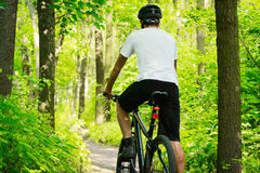 Cyclist Riding the Bike on the Trail in the Forest Royalty Free Stock Photography