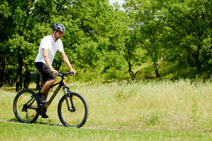 Cyclist Riding the Bike on the Trail in the Forest Stock Photos