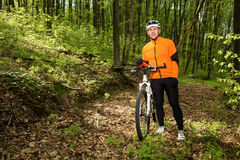 Cyclist Riding the Bike on a Trail in Summer Forest Stock Photography