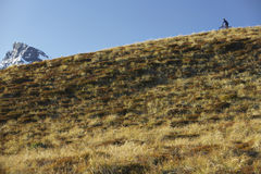 Cyclist Riding On Hill Stock Images