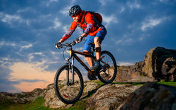 Cyclist Riding Mountain Bike Down Spring Rocky Hill at Beautiful Sunset. Extreme Sports and Adventure Concept. Stock Image
