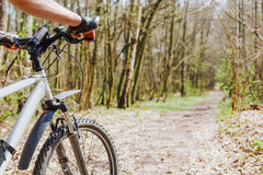 Cyclist riding mountain bike on forest trail Royalty Free Stock Photo