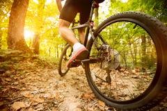 Cyclist riding mountain bike Royalty Free Stock Image
