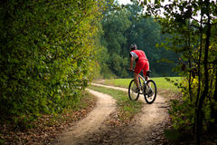 Cyclist riding mountain bike on trail at evening. Stock Photography