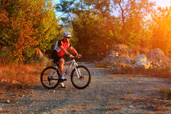 Cyclist riding mountain bike on trail at evening. Stock Image