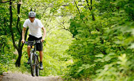 Free Cyclist Riding The Bike On The Trail In The Forest Stock Photo - 32205420