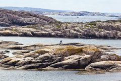 Cyclist on the rocks. In the sea islands Royalty Free Stock Photos