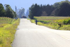 Cyclist on Rural Road Stock Photos