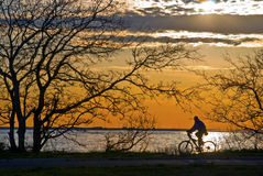 Cyclist Sandy Hook Stock Photography