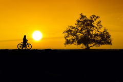 Cyclist silhouette sunset Royalty Free Stock Image