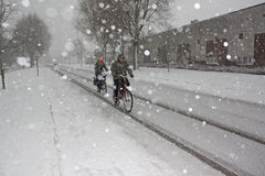 Cyclist in the snow, Amsterdam , Holland Stock Photography