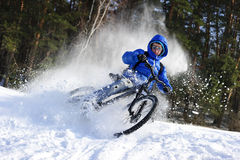 Cyclist in snow. Extreme cyclist riding mountain bike in flying snow near winter forest in sunny cold day Royalty Free Stock Photos