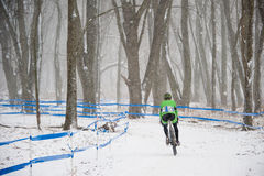 Cyclist in Snow. A cyclist rides through the snowy woods royalty free stock photos