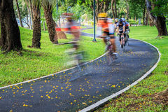 Cyclist at speed on bicycle road in the park Royalty Free Stock Image