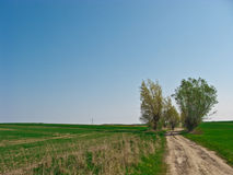 Cyclist in spring dirt path Stock Photos