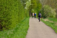 cyclist in springtime stock photography