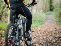 Cyclist standing in front of a path of the forest Royalty Free Stock Photos