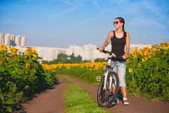 Cyclist in a sunflower's field on a bike. travel Royalty Free Stock Image