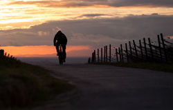 Cyclist in sunset Stock Photo