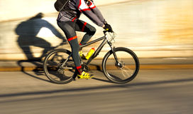 Cyclist in sunshine Royalty Free Stock Image