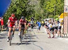The Cyclist Thomas De Gendt on Mont Ventoux - Tour de France 201 Royalty Free Stock Photo