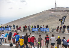 The Cyclist Thomas Voeckler. Mont Ventoux, France- July 14 2013: The French cyclist Thomas Voeckler (Europcar Team), climbing the last kilometer of the ascension Royalty Free Stock Photo