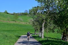 A cyclist on a trail in a beautiful spring landscape in the Odenwald, Germany royalty free stock image