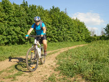 Cyclist on a white bike rides through woods. Stock Photography