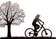 Cyclist woman silhouette outdoors Royalty Free Stock Images